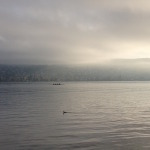 Zurich lake in the morning